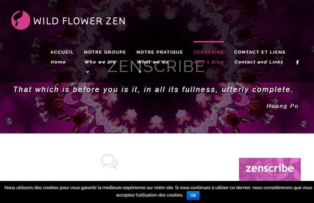 Wildflower Zenscribe - website